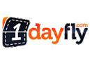 1Dayfly
