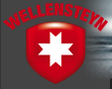 wellensteyn.com